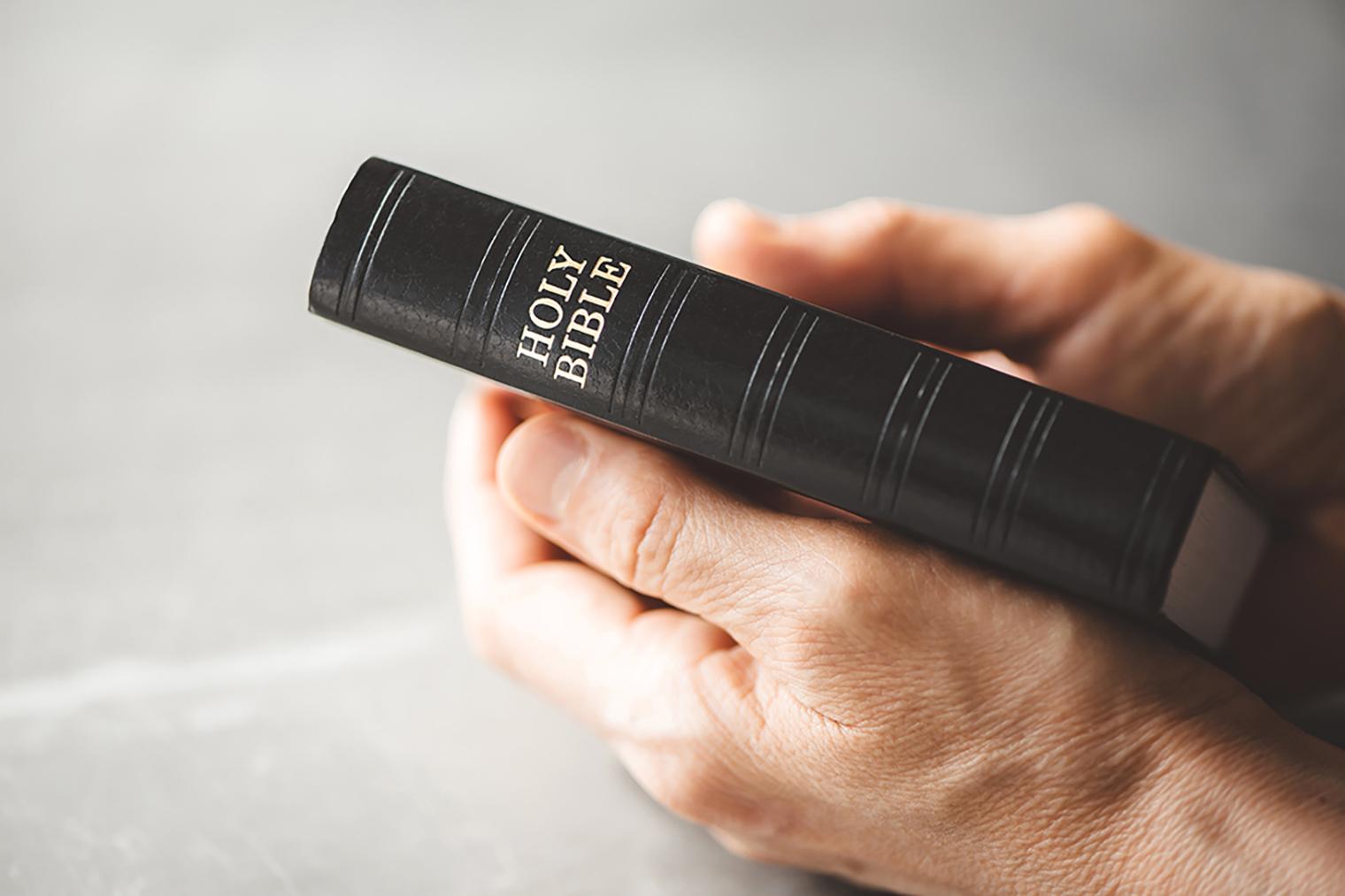 聖書の学びがスタートします